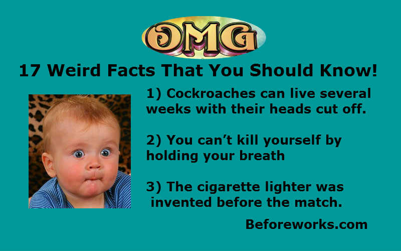 17 Weird Facts That You Should Know